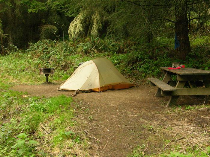 campsite with picnic table, food storage locker and BBQ grillGlen 7