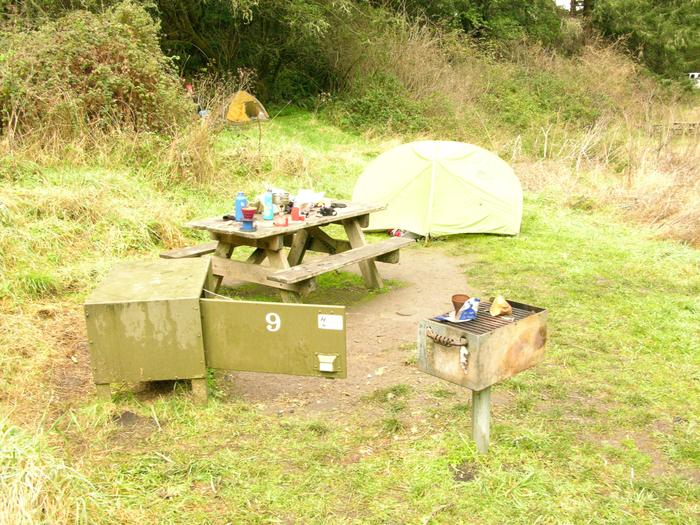 campsite with picnic table, food storage locker and BBQ grillGlen 9