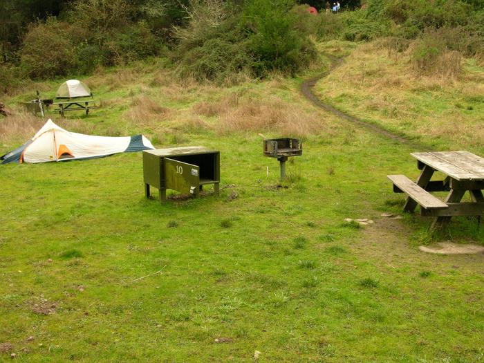campsite with picnic table, food storage locker and BBQ grillGlen 10