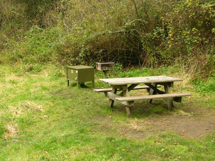 campsite with picnic table, food storage locker and BBQ grillGlen 12
