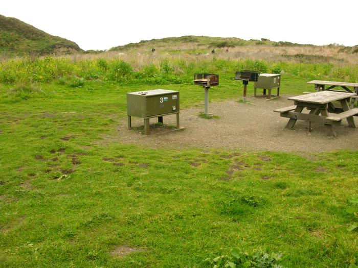 Campsite with picnic table, food storage locker, and charcoal grill.Wildcat 3AB
