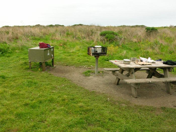 Campsite with picnic table, food storage locker, and charcoal grill.Wildcat 5