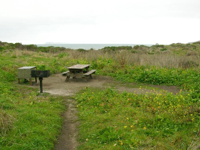 Campsite with picnic table, food storage locker, and charcoal grill.Wildcat 6