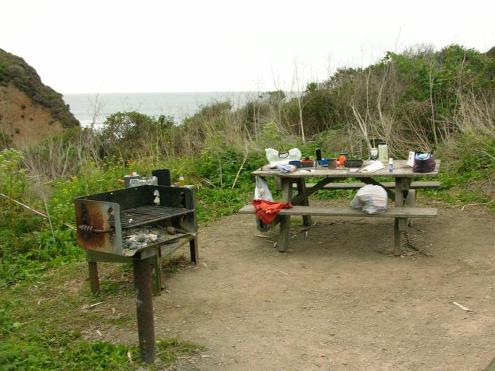 Campsite with picnic table, food storage locker, and charcoal grill.Wildcat 7