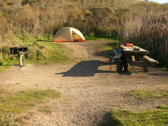 Campsite with picnic table, food storage locker, and charcoal grill.Coast 2