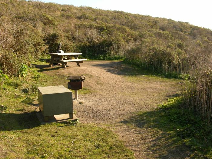 Campsite with picnic table, food storage locker, and charcoal grill.Coast 3