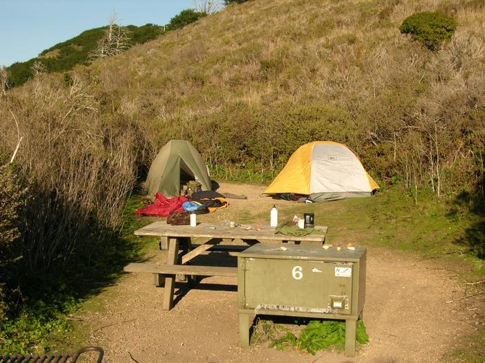 Campsite with picnic table, food storage locker, and charcoal grill.Coast 6
