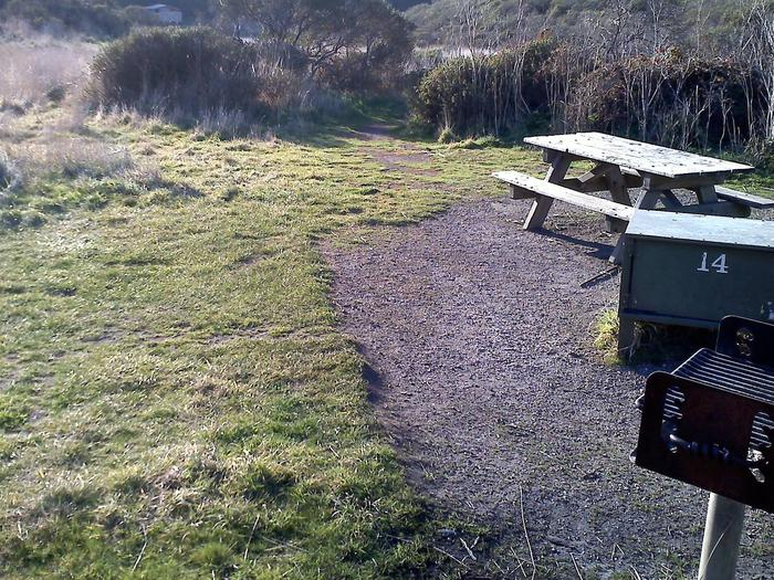 Campsite with picnic table, food storage locker, and charcoal grill.Coast 14