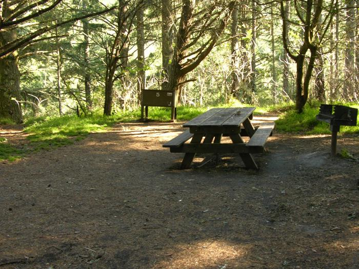 Campsite with picnic table, food storage locker, and charcoal grill.Sky 5