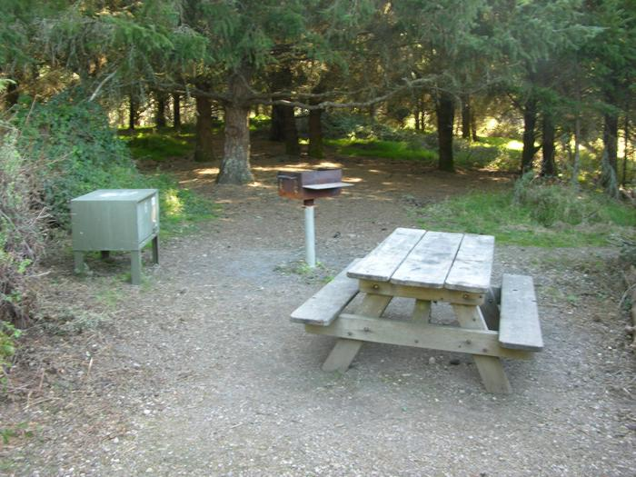 Campsite with picnic table, food storage locker, and charcoal grill.Sky 6