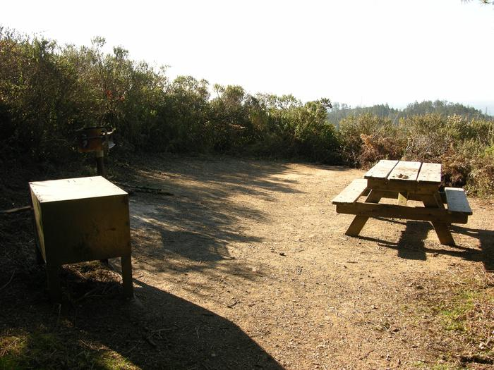 Campsite with picnic table, food storage locker, and charcoal grill.Sky 11