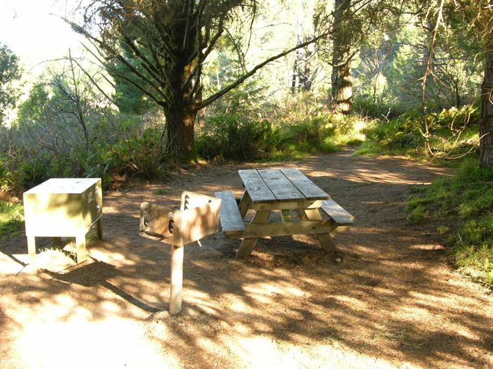 Campsite with picnic table, food storage locker, and charcoal grill.Sky 12