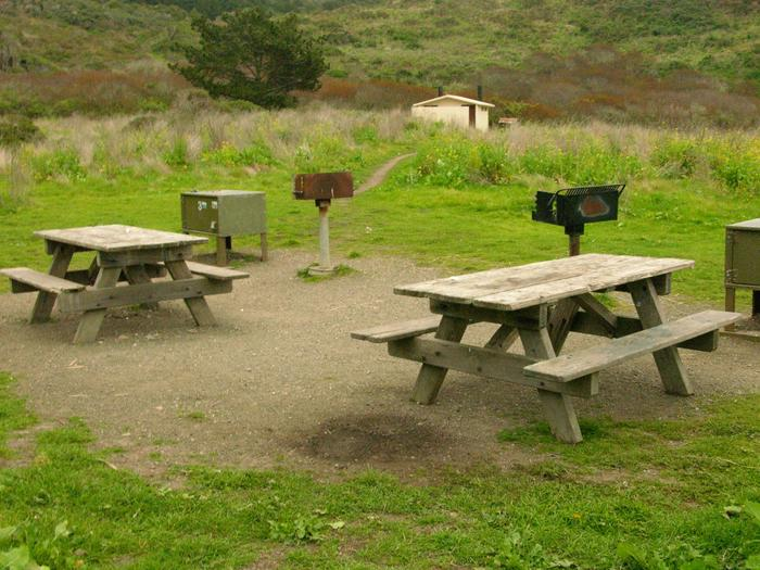 campsite with picnic table, food storage locker and BBQ grillWildcat 1AB