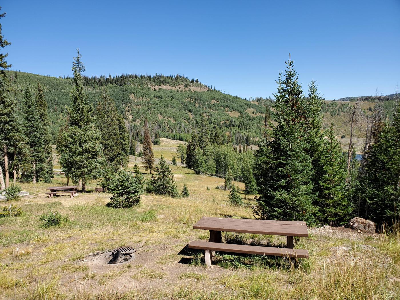 Flat Canyon Campground Site #7bFlat Canyon Campground Site #7