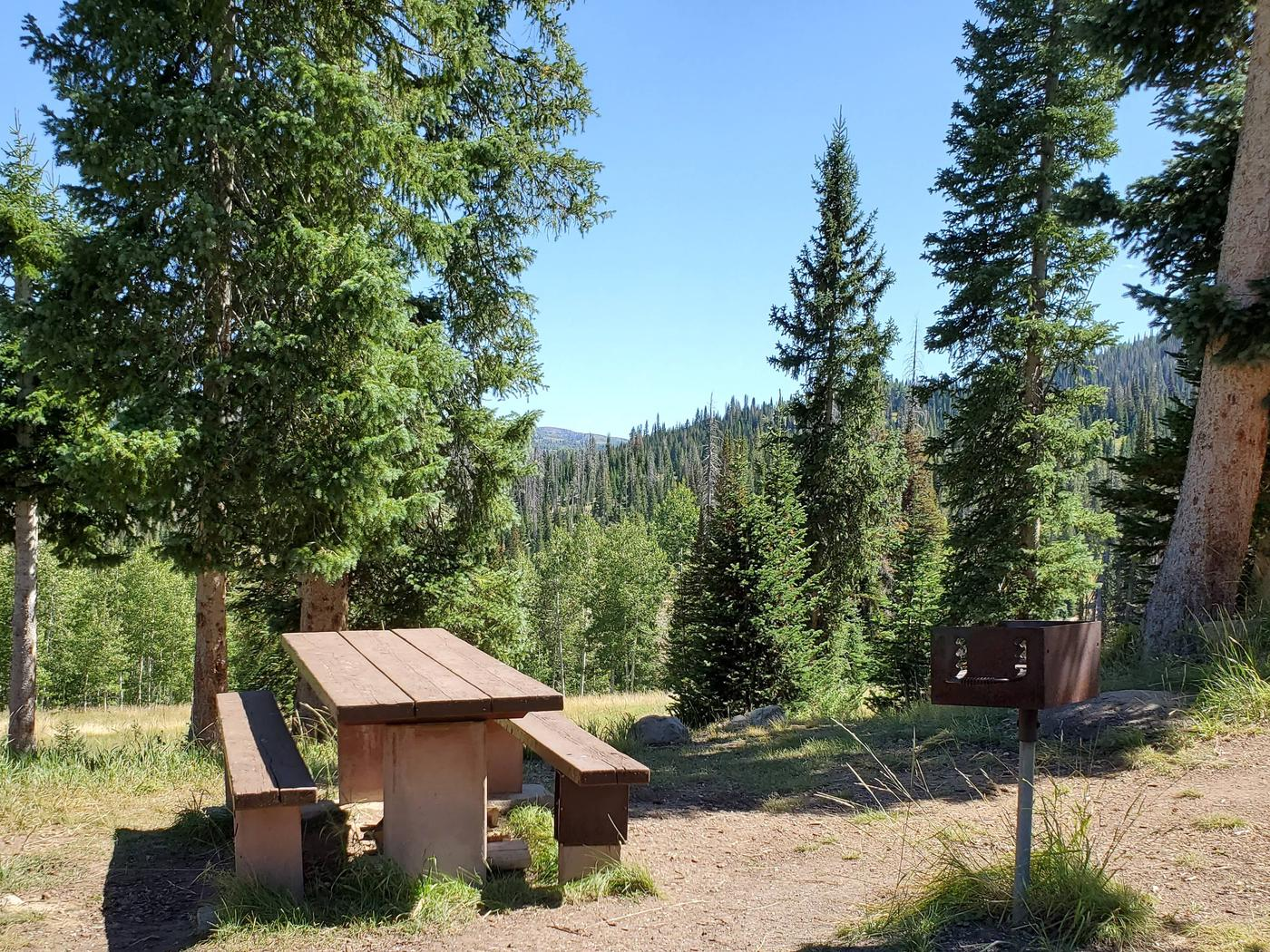 Flat Canyon Campground Site #9