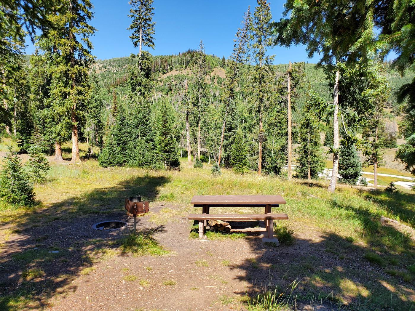 Flat Canyon Campground Site #9cFlat Canyon Campground Site #9
