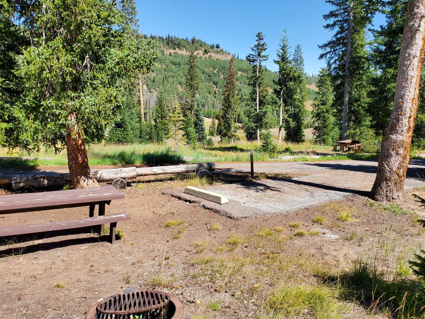 Flat Canyon Campground Site #10