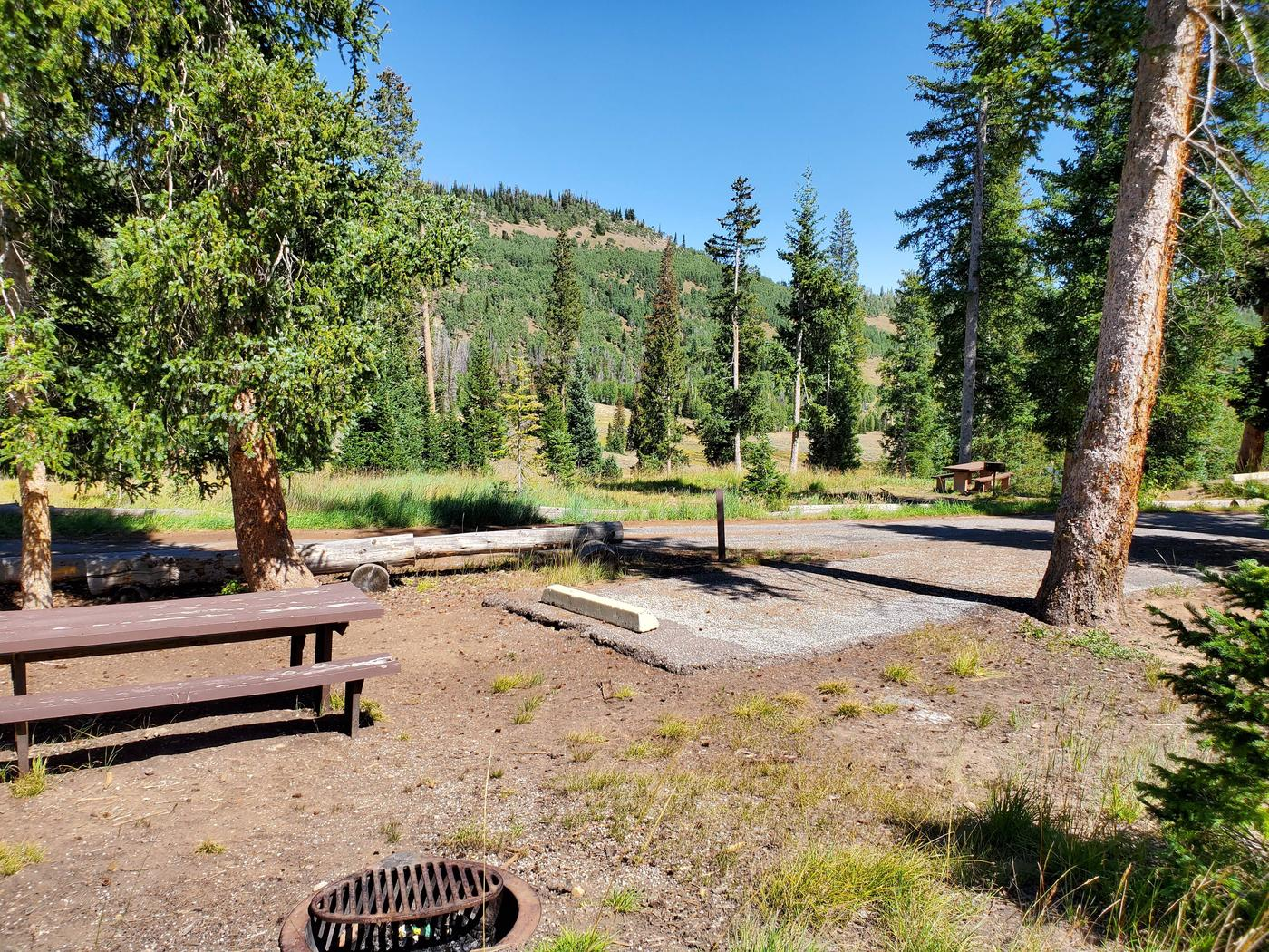 Flat Canyon Campground Site #10cFlat Canyon Campground Site #10