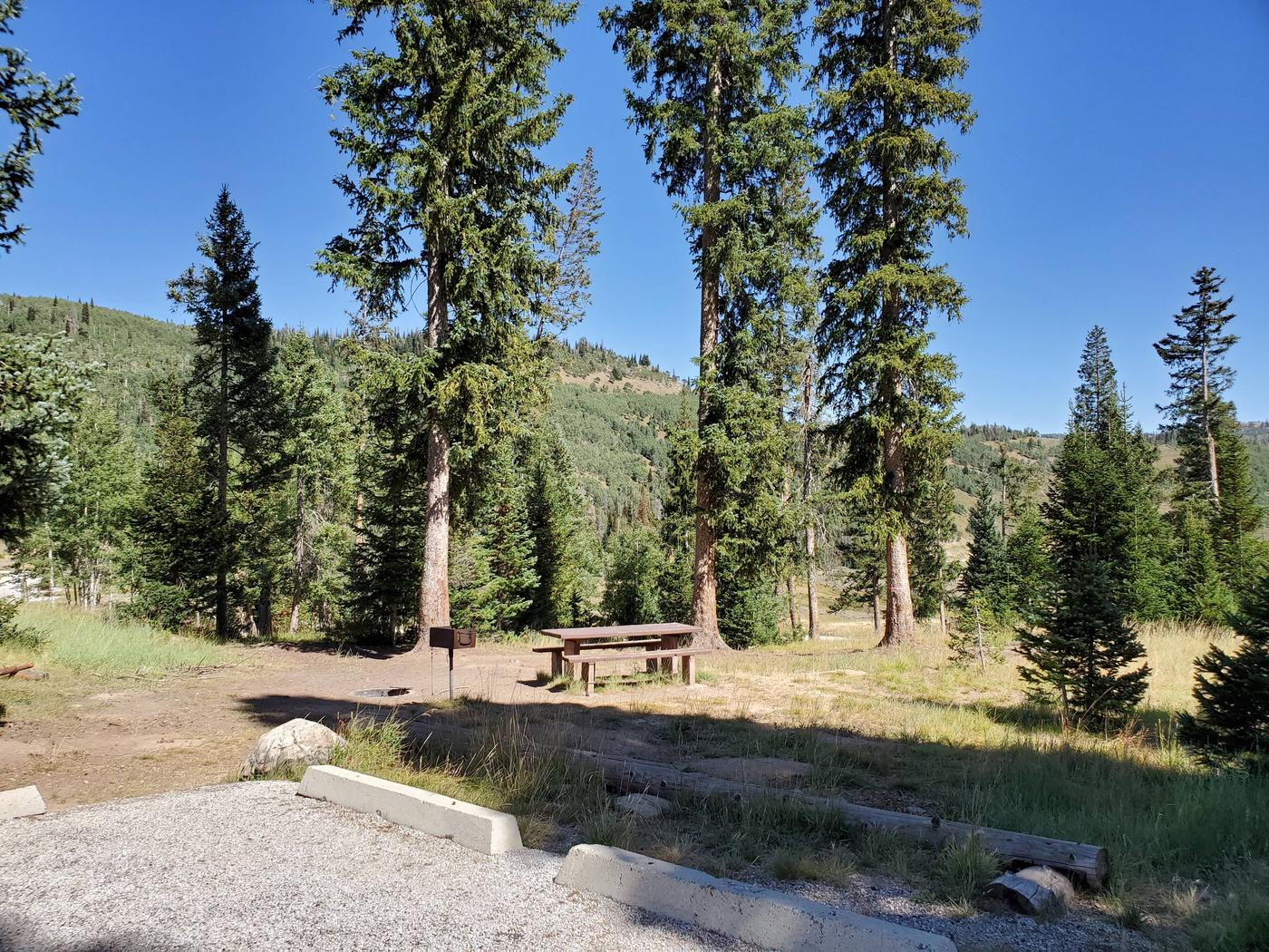 Flat Canyon Campground Site #11aFlat Canyon Campground Site #11