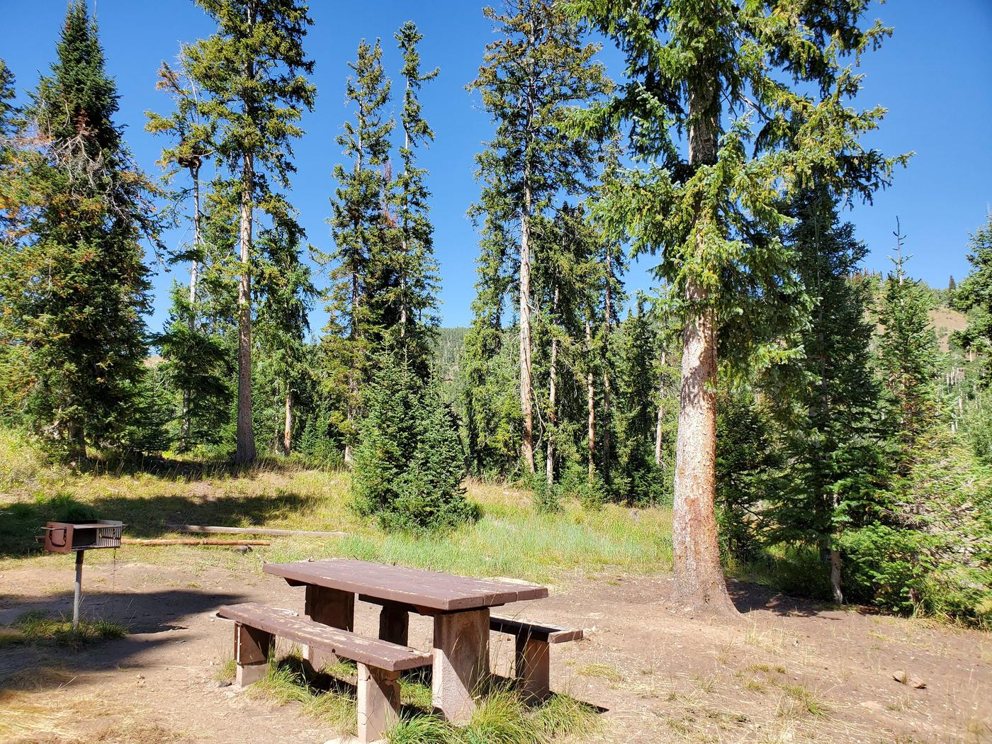 Flat Canyon Campground Site #11cFlat Canyon Campground Site #11