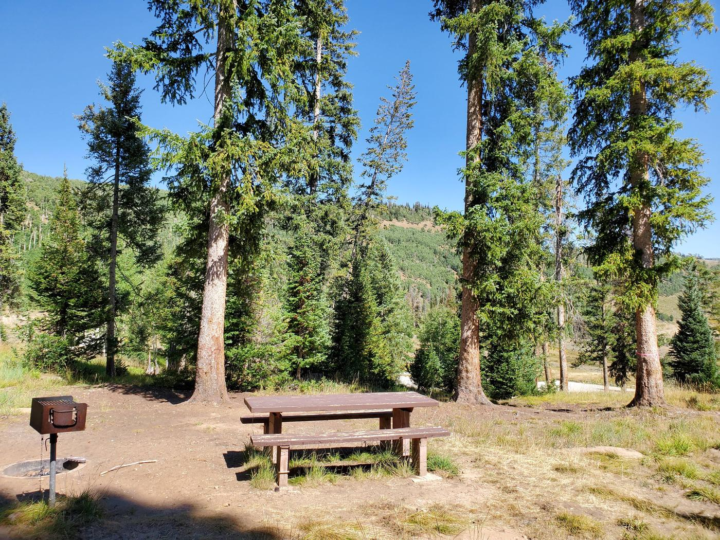 Flat Canyon Campground Site #11dFlat Canyon Campground Site #11
