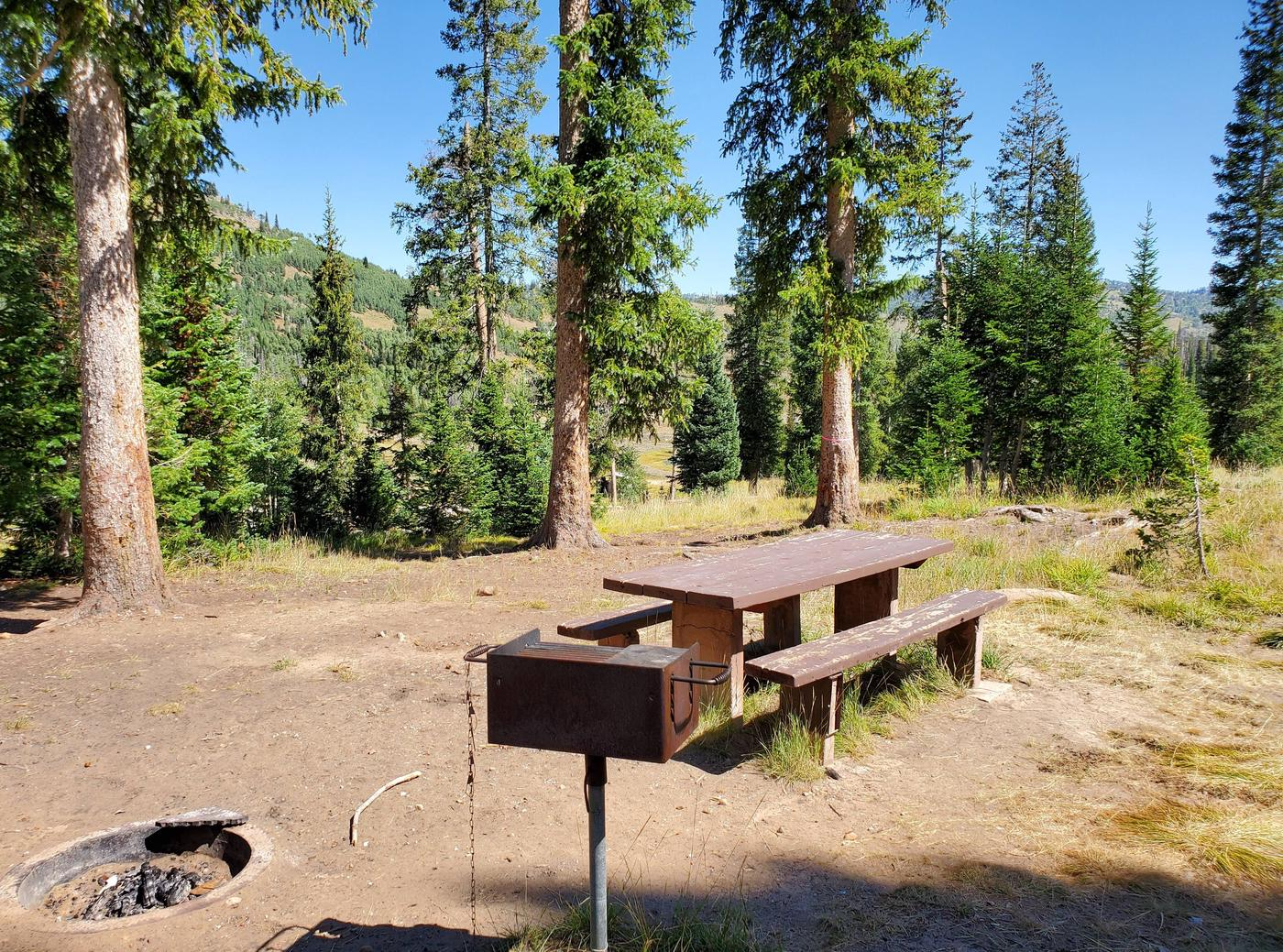 Flat Canyon Campground Site #11bFlat Canyon Campground Site #11