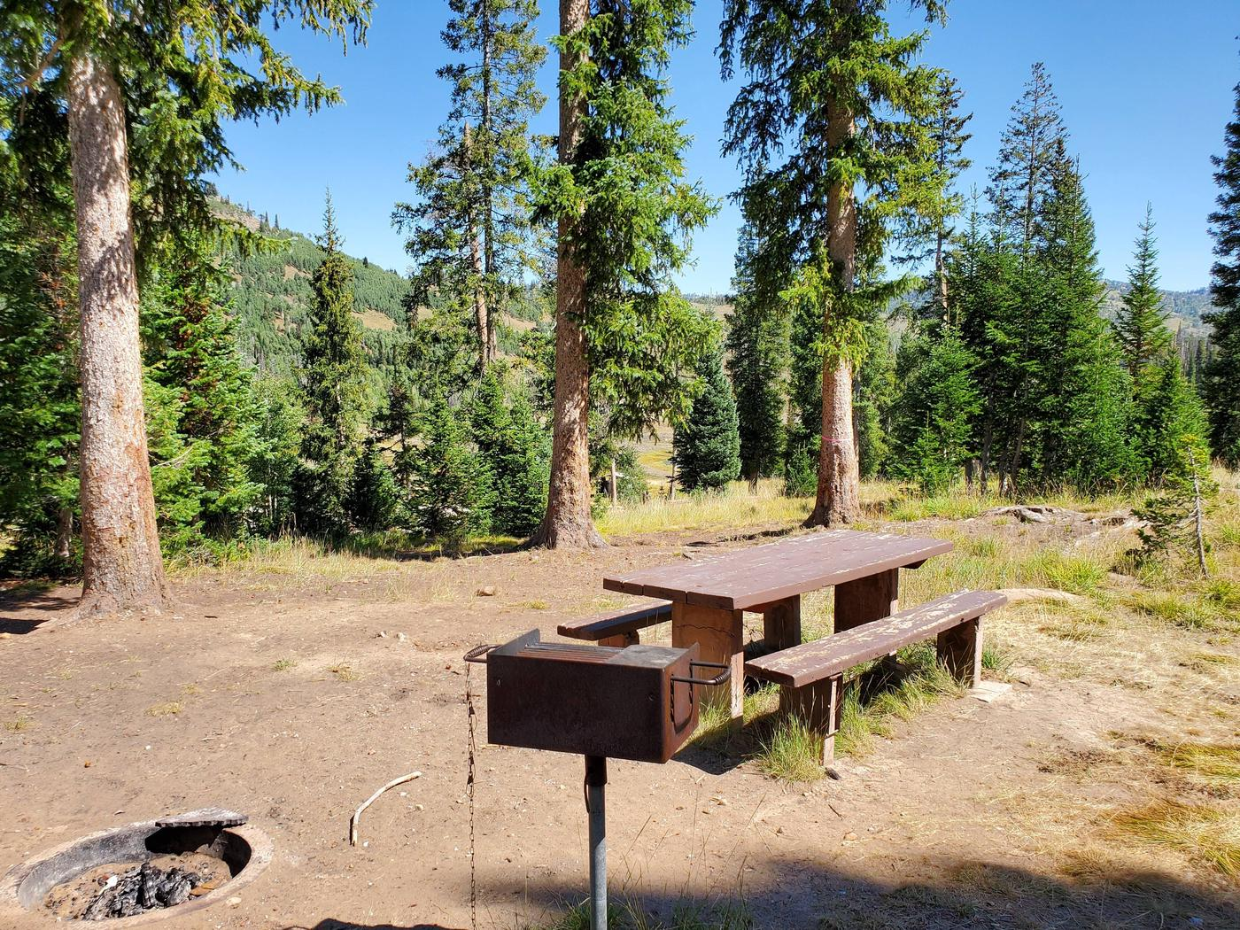 Flat Canyon Campground Site #11