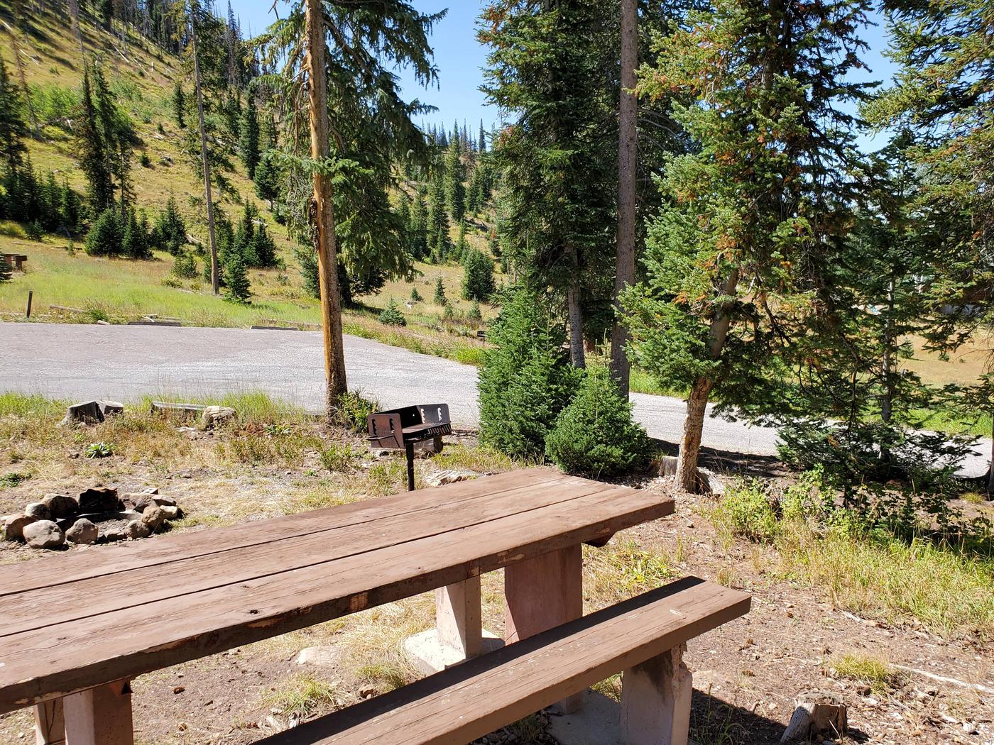 Flat Canyon Campground Site #12