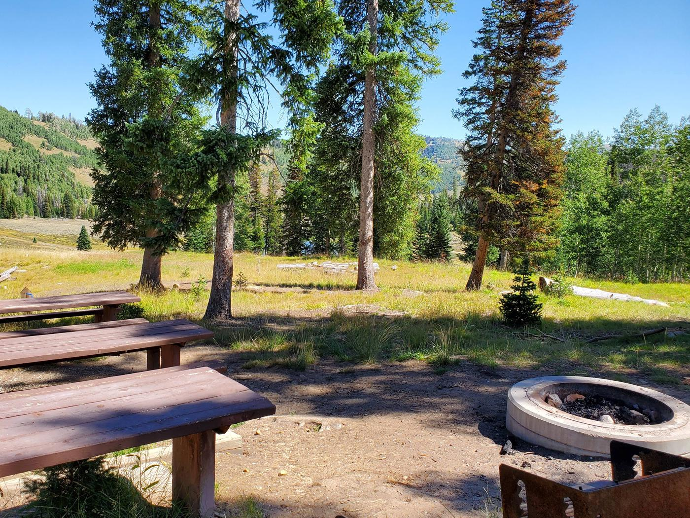 Flat Canyon Campground Site #13