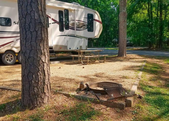 Awning-side clearance, campsite view.Victoria Campground, campsite 18.