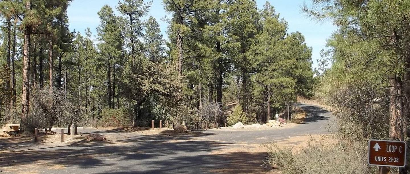 Hilltop Campground Loop C Entrance to 21-38 On The Right, Site 20 Paved Spur Straight Ahead Surrounded By TreesHilltop Campground Loop C Entrance