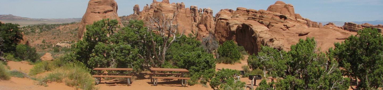 Canyon Wren Group Site