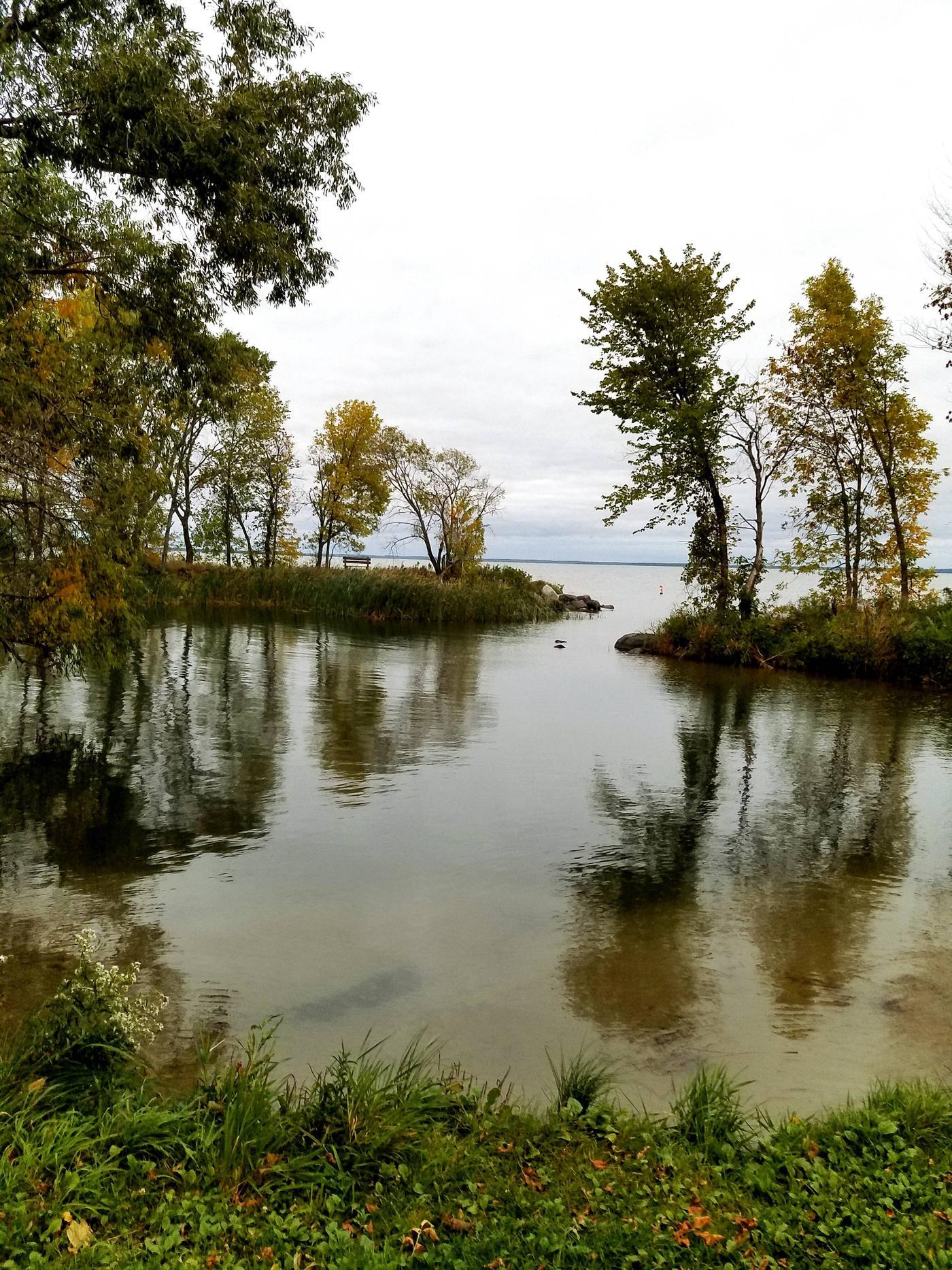 Stony Point Chippewa National Forest