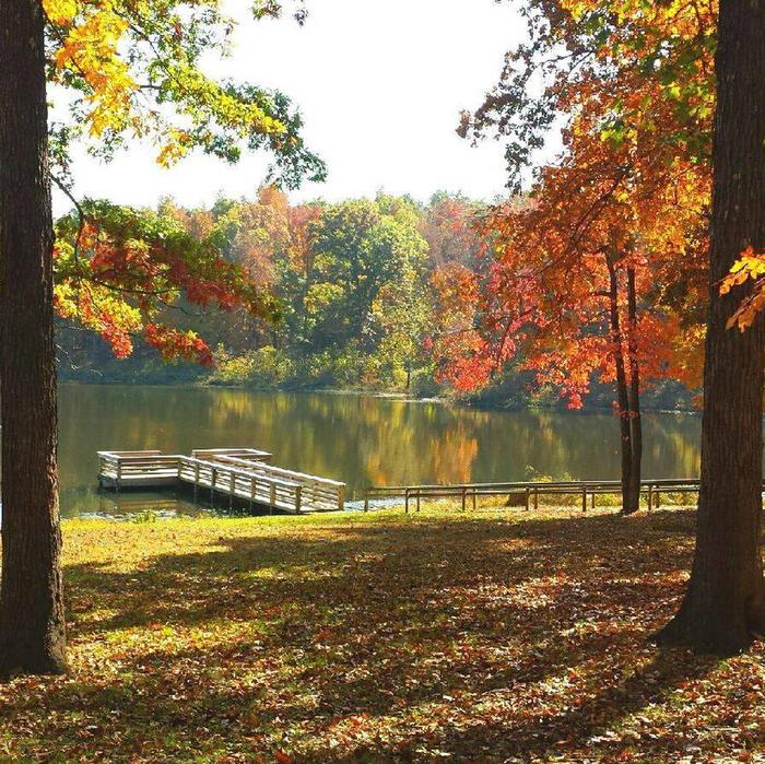 Lake view with fall colors
