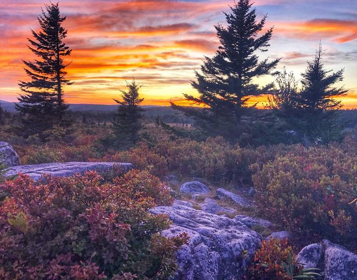 Monongahela National Forest sunsetMonongahela National Forest