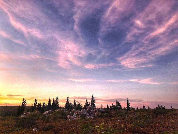 Monongahela National Forest