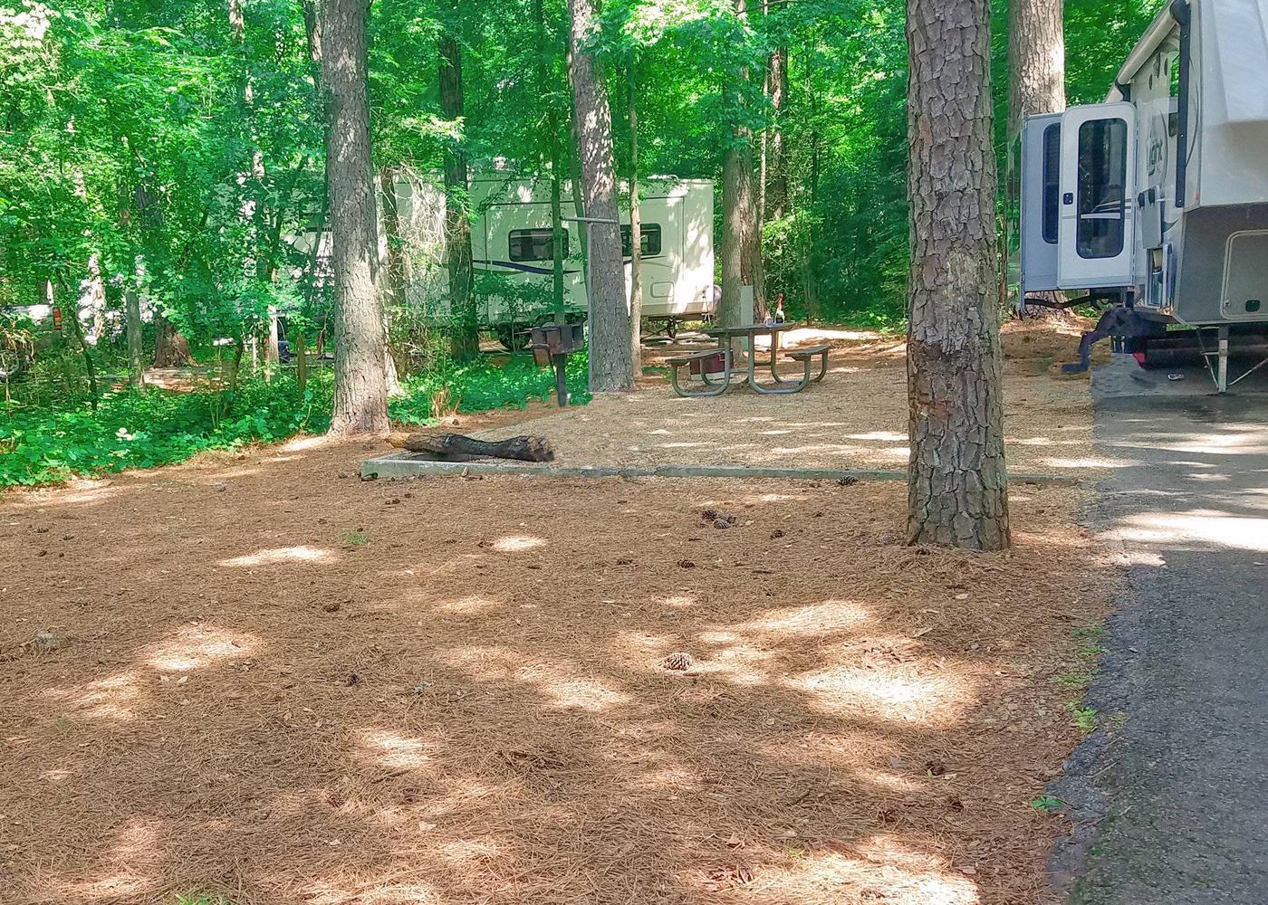 Campsite view.Victoria Campground, campsite 32.