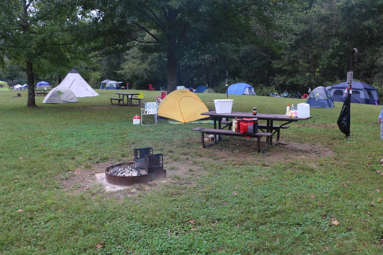 Steel Creek Camp Site #7 (photo 5)Steel Creek Camp Site #7