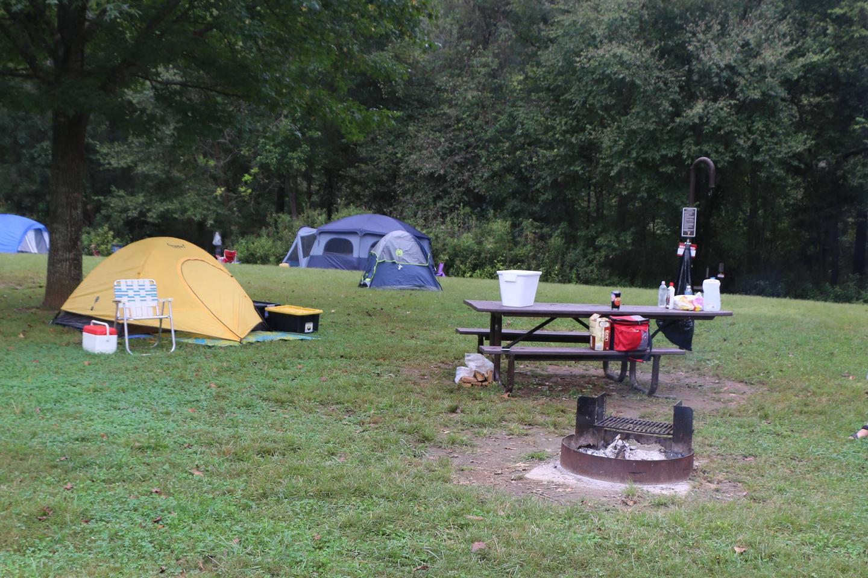 Steel Creek Camp Site #7 (photo 6)Steel Creek Camp Site #7