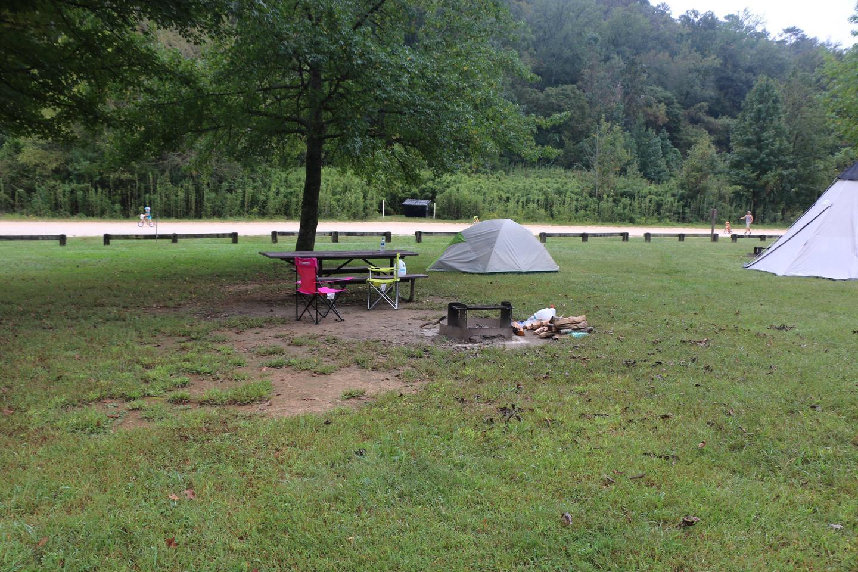 Steel Creek Camp Site #9 (photo 4)Steel Creek Camp Site #9