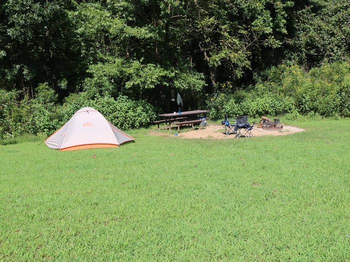 Steel Creek Camp Site #10
