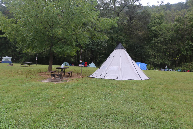 Steel Creek site #11 (photo 3)Site #11
