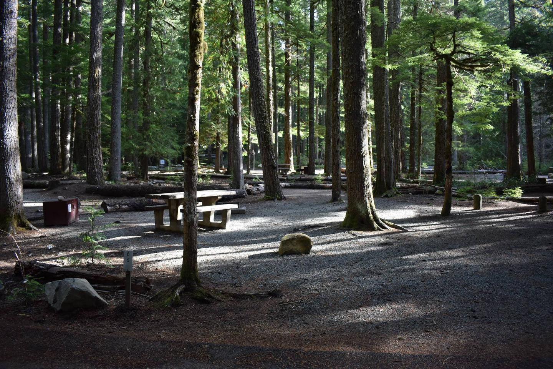 Ohanapecosh Campground - Site D005