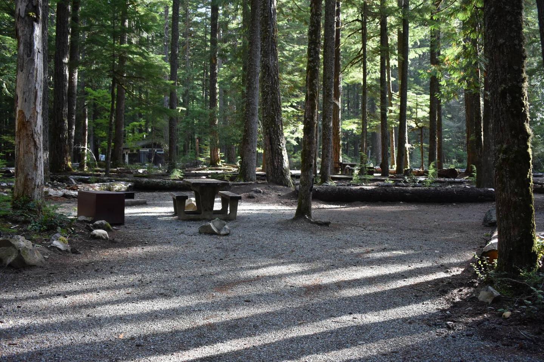 Ohanapecosh Campground - Site D007