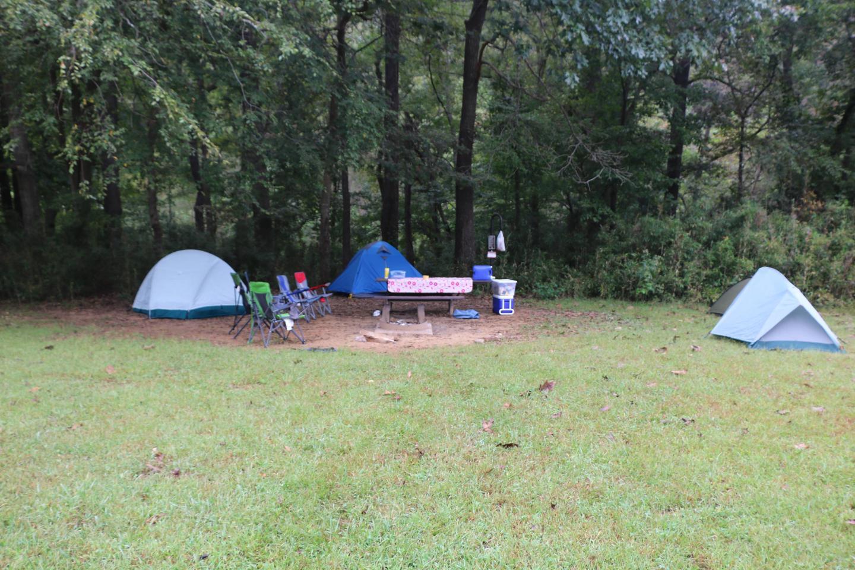 Steel Creek Camp Site #12 (photo 5)Steel Creek Camp Site #12