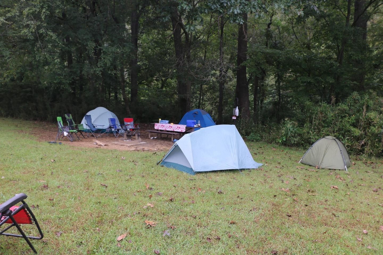 Steel Creek Camp Site #12 (photo 6)Steel Creek Camp Site #12