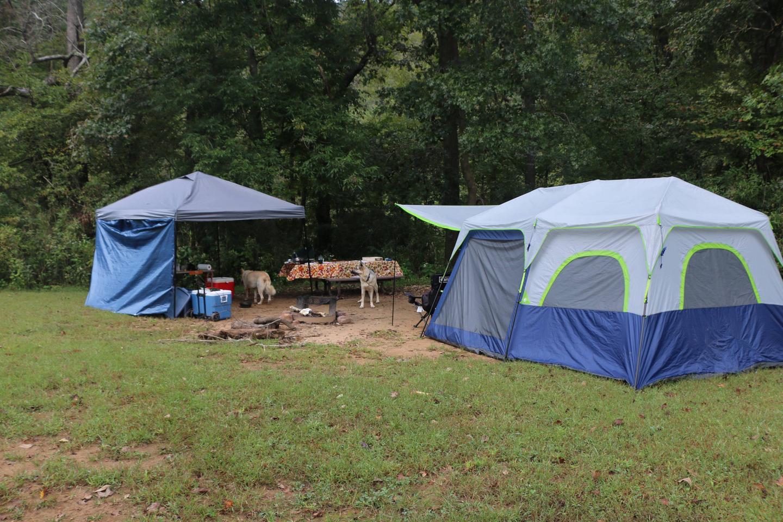 Steel Creek Camp Site #14 (photo 5)Steel Creek Camp Site #14