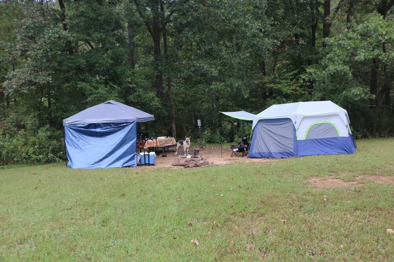 Steel Creek Camp Site #14 (photo 6)Steel Creek Camp Site #14