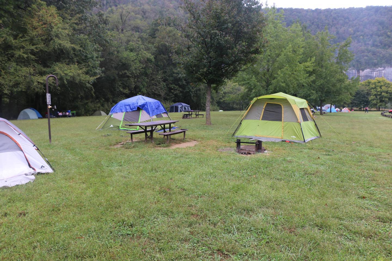 Steel Creek Camp Site #15 (photo 5)Steel Creek Camp Site #15