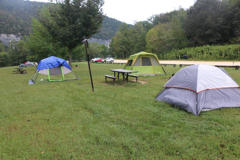 Steel Creek Camp Site #15 (photo 6)Site 15